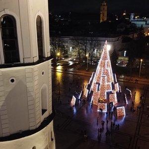 Pamatykite: įžiebta pagrindinė Vilniaus miesto eglė