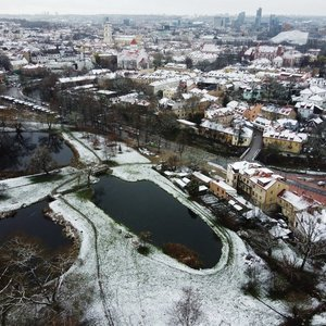 Lietuviai jau suskubo džiaugtis pirmuoju sniegu: įspūdžiais dalijasi net vaikai