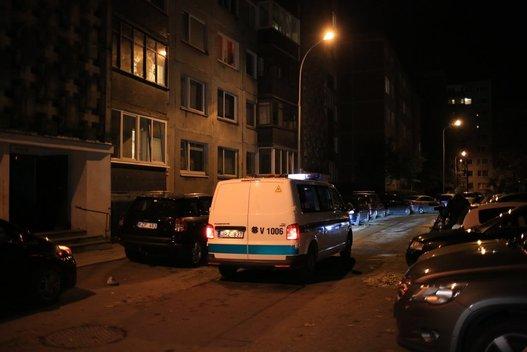 Gaisras Vilniuje pražudė moterį (nuotr. Broniaus Jablonsko)