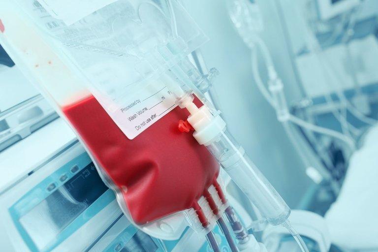 Kraujas (nuotr. 123rf.com)