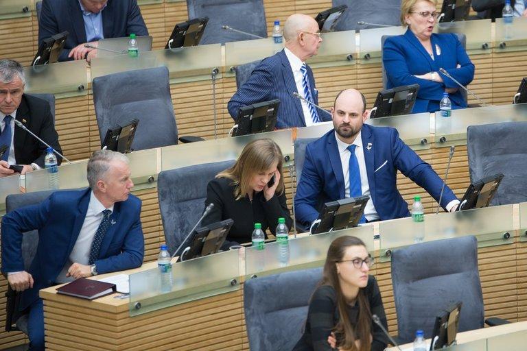 Seimas (nuotr. Fotodiena.lt)
