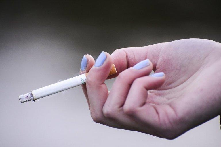 cigaretė (nuotr. Fotodiena.lt/Pauliaus Peleckio)