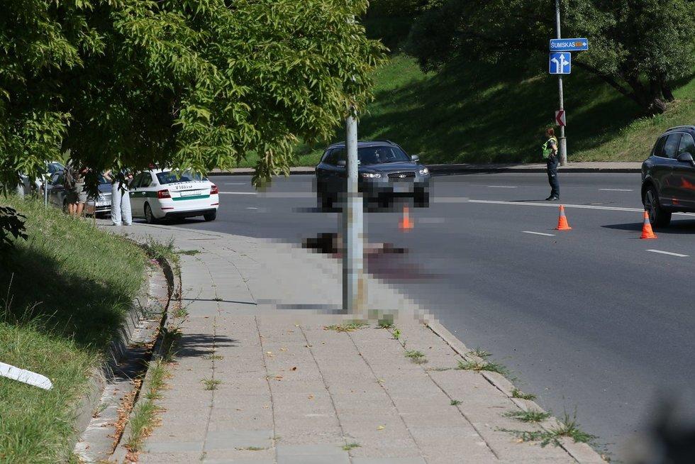 Vilniuje numuštas briedis – gyvūnas pagalbos laukė 3 valandas (nuotr. Broniaus Jablonsko)