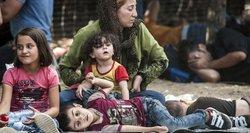 Biržų meras: nepriimsiu nė vieno pabėgėlio