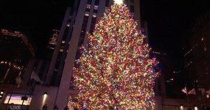 Niujorko eglė (nuotr. stop kadras)