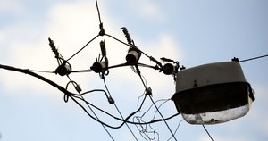 Elektra (nuotr. Fotodiena.lt/Karolio Kavolėlio)