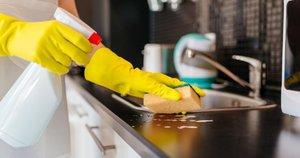 Namų valymas (nuotr. shutterstock.com)