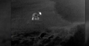 """Kaišiadorių rajone – medžiotojo ir lokio akistata: """"Buvau šokiruotas, kai pamačiau didelį užpakalį"""" (nuotr. stop kadras)"""