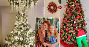 Lietuvaitė namuose sukūrė stebuklingą Kalėdų pasaką: sunku atitraukti akis (tv3.lt fotomontažas)