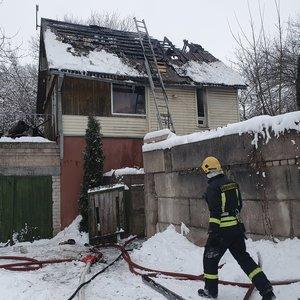 Vilniuje užsiliepsnojus namui žmonės gelbėjo turtą, išgelbėtas ir kačiukas