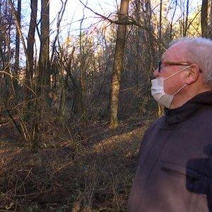 Miškų kirtimai piktina gyventojus: šį kartą stojo ginti Gojaus miško