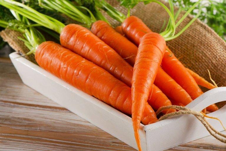 Plautos morkos - 167,8 proc. arba 0,48 euro