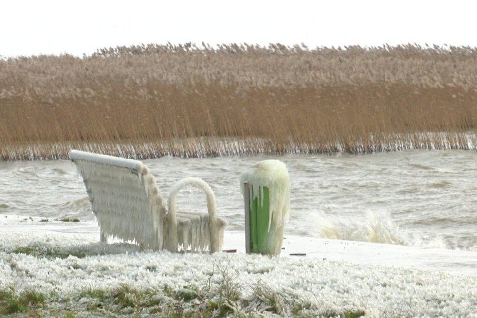 Nidiškiai traukė telefonus: gamta sukūrė unikalų reiškinį – bangų purslai ir šaltis sukūrė skulptūras (nuotr. stop kadras)