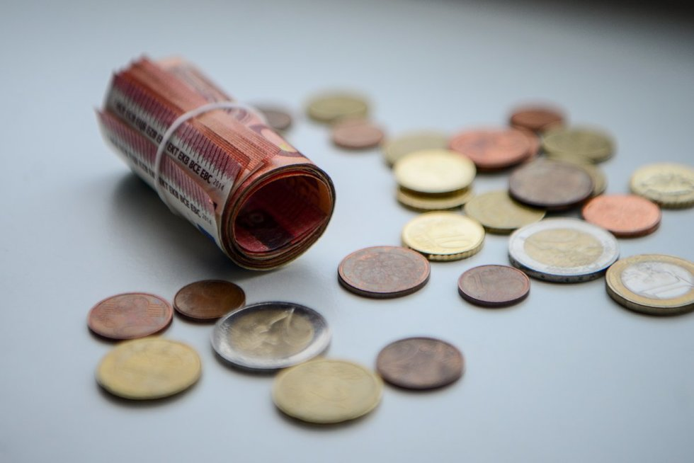 Pinigai (nuotr. K. Polubinska/ fotodiena.lt)