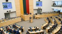 Seime patvirtinta I. Šimonytės kandidatūra į premjerės postą (nuotr. Fotodiena/Justinas Auškelis)