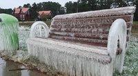 Gamtos ledo skulptūros Nidoje (nuotr. Nidos gyventojos)