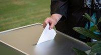 Rinkimai pandemijos sąlygomis – balsuoti galės ir esantys saviizoliacijoje (Fotodiena/Justinas Auškelis)