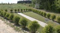 Liepynės kapinėse įrengta mirusiųjų pelenų barstymo vieta kaitina aistras (nuotr. stop kadras)