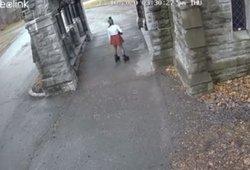Kapinių kameros užfiksavo neeilinę akimirką: vaizdas spaudžia ašarą