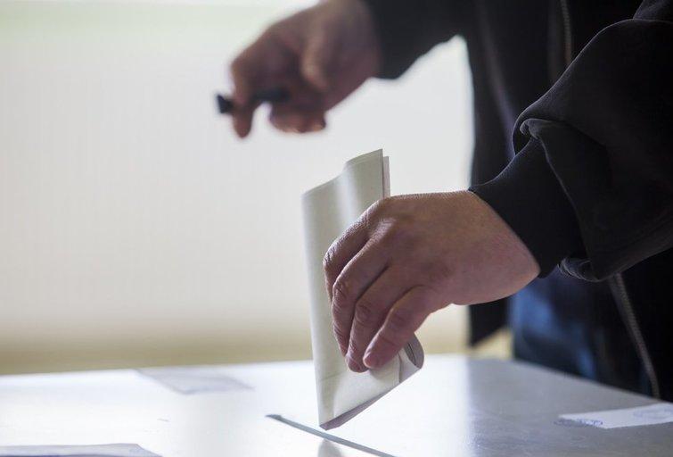 Referendumas (nuotr. 123rf.com)
