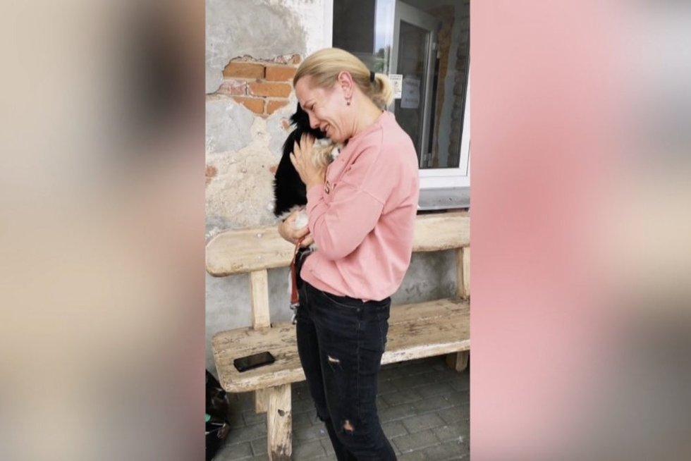 Jaudinanti istorija pakaunėje: šuo pas šeimininkus grįžo po metų (nuotr. stop kadras)