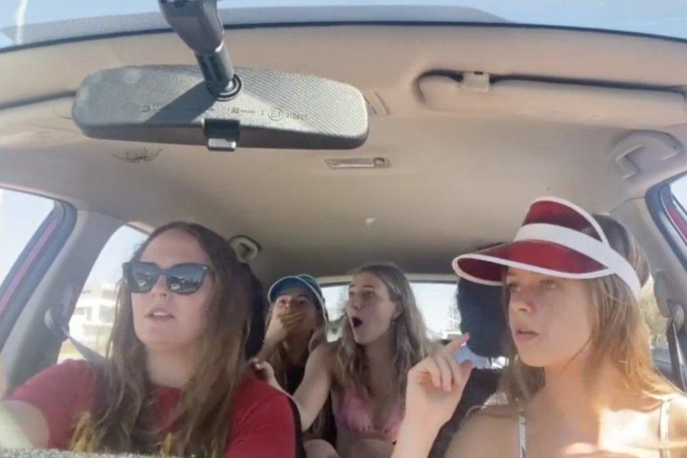 Atidžiau į automobilio lubas įsižiūrėjusios merginos ėmė klykti iš siaubo: teko stoti šalikelėje (nuotr. stop kadras)