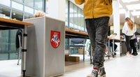 Rinkimai (nuotr. Fotodiena/Justino Auškelio)