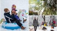 L. Klimka atskleidė, koks šiemet bus pavasaris (tv3.lt fotomontažas)