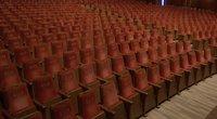 Operos ir baleto teatras (nuotr. stop kadras)