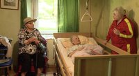TV Pagalba. Senolė šaukiasi pagalbos: sūnus gyvenimą pavertė tikru pragaru
