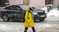 Žiema (Fotodiena/ Viltė Domkutė)