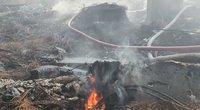 Alytaus mero antradienio gaisro nuotraukos (nuotr. facebook.com)