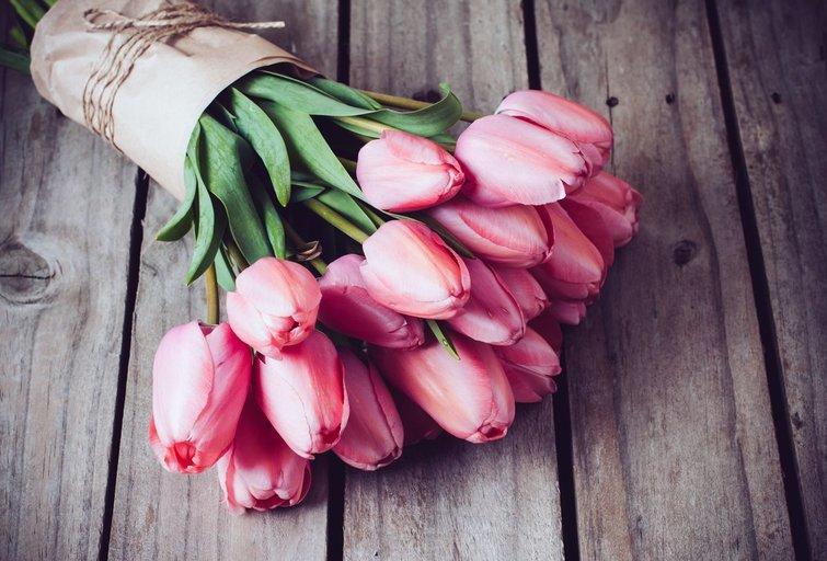 Tulpės (nuotr. 123rf.com)