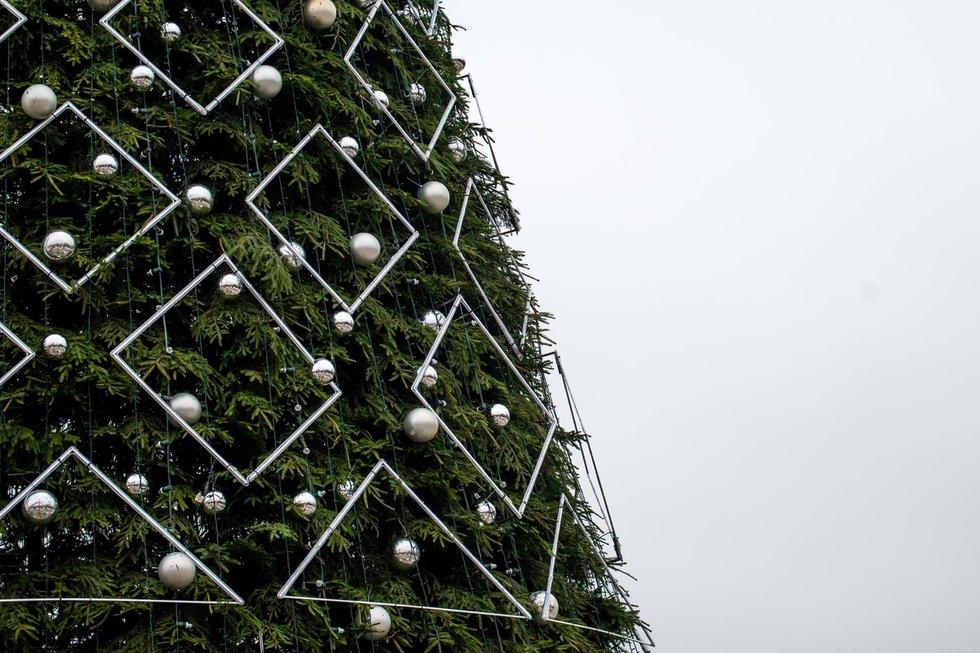 Sostinėje jau kyla Kalėdų eglė