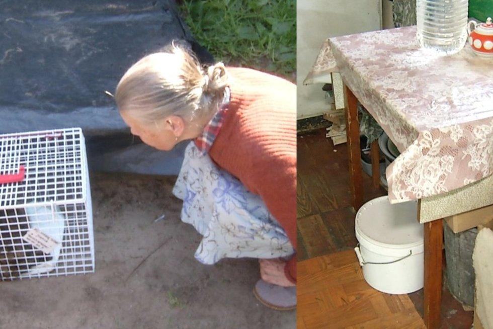 Vilniaus centre gyvenanti senolė nustebino ir visko mačiusius: nei tualeto, nei dušo, nei viryklės (tv3.lt fotomontažas)