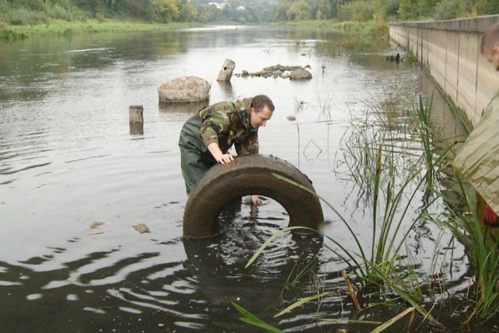 Šeštadienio rytą Lietuvos gyventojai pradėjo tvarkydami gamtą (nuotr. stopkadras)