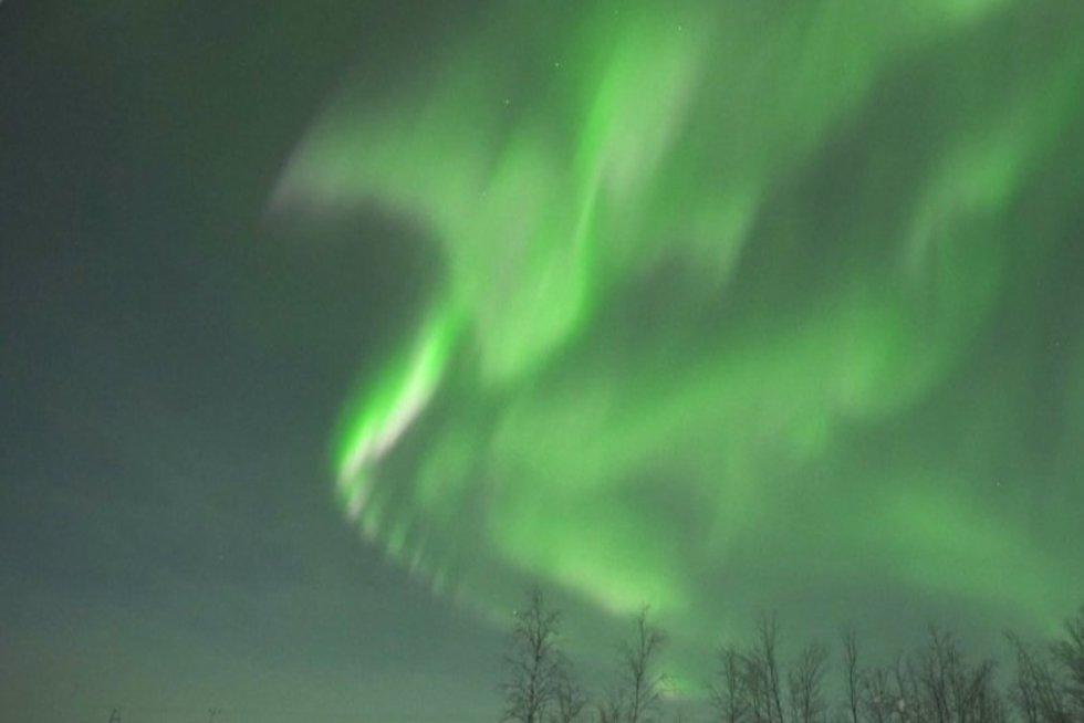 Spalvinga Šiaurės pašvaistė 30 laipsnių šalčio sukaustytoje Laplandijoje (nuotr. stop kadras)