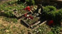 Perlojos kapinėse išvartyti paminklai (nuotr. stop kadras)