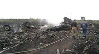 Malaizijos lėktuvo katastrofos vieta (nuotr. SCANPIX)