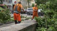 Lietuvoje praūžusi audra pridarė daugybę nuostolių: labiausiai nukentėjo trys miestai
