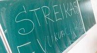 Vyksta pedagogų streikas (nuotr. Tv3.lt/Ruslano Kondratjevo)