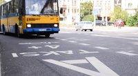 Autobusas (nuotr. Fotodiena.lt)