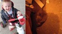 Mama naktį pabudo nuo kurtinančio vaiko klyksmo – vidury nakties vaiką užpuolė milžiniška žiurkė (nuotr. facebook.com)