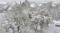 """sniegas (nuotr. Orai ir klimatas Lietuvoje/""""Facebook"""")"""