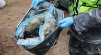 Sulaikyti narkotikų platintojai (nuotr. Policijos)