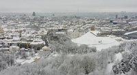 Žiema (nuotr. stop kadras)