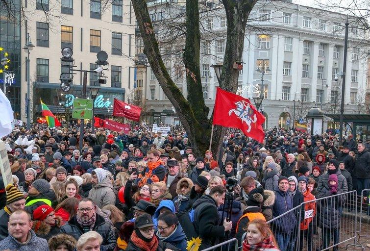 Protestas Vilniuje (Fotodiena/Vilius Jurgelevičius )