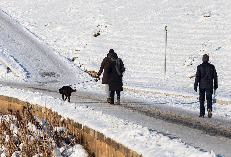 Užšalęs miestas (nuotr. Broniaus Jablonsko)
