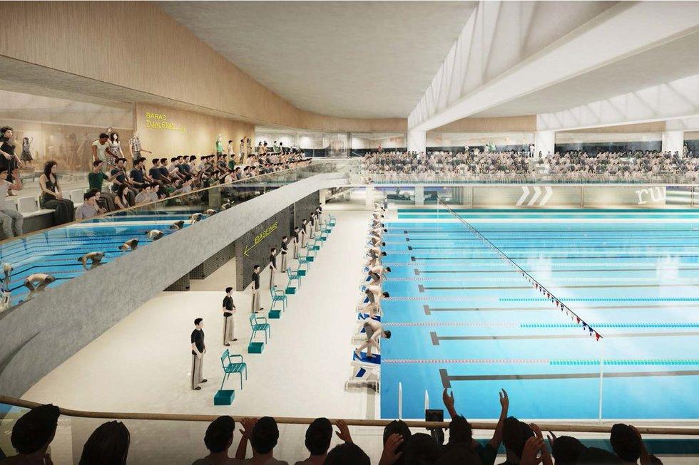 Lazdynų baseino projektas (nuotr. Organizatorių)