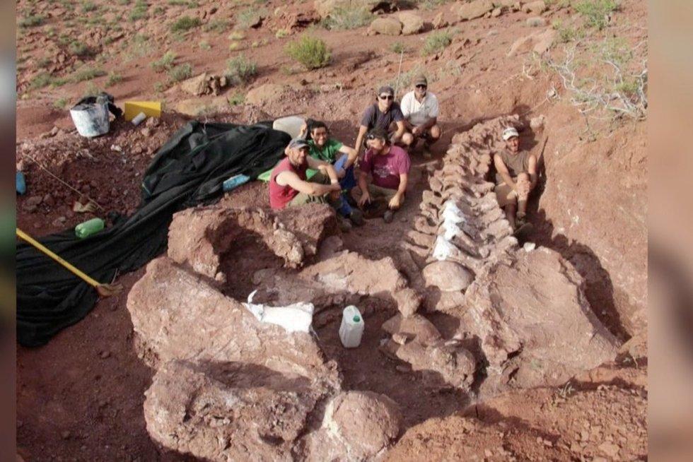 Dinozauro liekanos (nuotr. stop kadras)